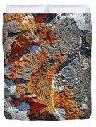 Orange Lichen Duvet Cover