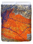 Orange Lichen Duvet Cover by Heiko Koehrer-Wagner
