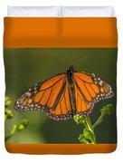 Orange Monarch Duvet Cover