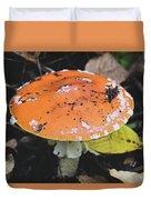 Orange Mushroom Duvet Cover