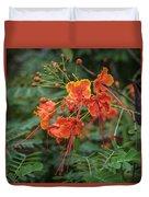 Orange Poinciana Tree Duvet Cover