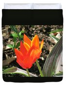 Orange Tulips Duvet Cover