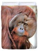 Orangutan Male Closeup Duvet Cover