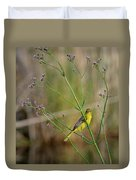 Orchard Oriole Duvet Cover