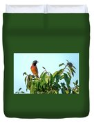 Orchard Oriole Songbird Perched On A Bush Duvet Cover