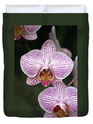 Orchid 22 Duvet Cover