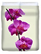 Orchid 26 Duvet Cover