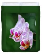 Orchid 30 Duvet Cover