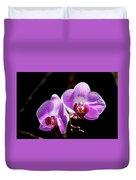 Orchid At Fairchild Gardens Duvet Cover