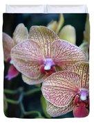 Orchid Beauty Duvet Cover