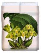 Orchid, Bifrenaria Aurantiaca, 1891 Duvet Cover
