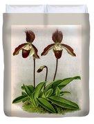 Orchid, C. Oenanthum Superbum, 1891 Duvet Cover