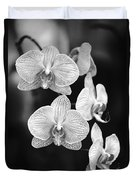 Orchid Cluster Close-up Duvet Cover
