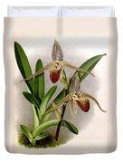 Orchid, Cypripedium Elliottianum, 1891 Duvet Cover