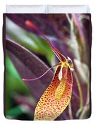 Orchid Flower - Restrepia Radulifera Duvet Cover