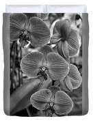 Orchid Glory Black And White Duvet Cover
