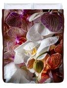 Orchid Iv Duvet Cover