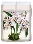 Orchid, O. Alexandrae Plumatum, 1891 Duvet Cover