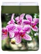 Orchid Phalaenopsis Carnival Bonsall Duvet Cover