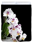 Orchid Phalaenopsis White Flower Duvet Cover