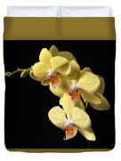 Orchid Set Against Black. Duvet Cover