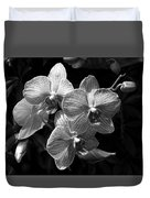 Orchids In Black And White Duvet Cover