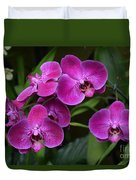 Orchids In Vivid Pink  Duvet Cover