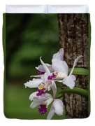 Orchids On A Tree Duvet Cover