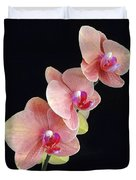 Orchids Reach For The Rainbow Duvet Cover