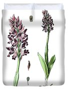 Orchis Militaris, The Military Orchid Duvet Cover