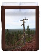 Oregon Landscape - Confused Tree At Lava Butte Duvet Cover