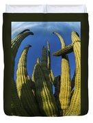 Organ Pipe Cactus Arizona Duvet Cover