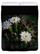Organ Pipe Cactus Flowers  Duvet Cover