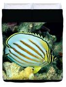 Ornate Butterflyfish Duvet Cover