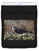 Osprey And Young - Feeding Duvet Cover