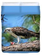 Osprey Breakfast Break Duvet Cover
