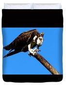 Osprey Feeding 014 Duvet Cover