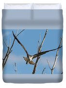 Osprey Launches Head On Duvet Cover