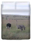 Ostrich Love Duvet Cover
