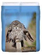 Owl 4 Duvet Cover