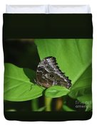 Owl Butterfly With Fantastic Distinctive Eyespots  Duvet Cover