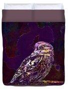 Owl Little Owl Bird Animal  Duvet Cover