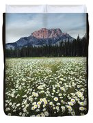 Ox-eyed Daisies And Cascade Mountain Duvet Cover