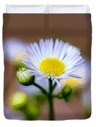 Oxeye Daisy - Paint Duvet Cover