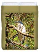 P2024983 Black Crowned Night Heron Duvet Cover