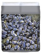 Pacific Blue Mussels Duvet Cover