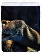 Pacific Moray Eel Duvet Cover
