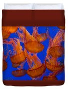 Pacific Sea Nettle Cluster 1 Duvet Cover