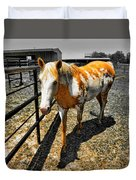 Painted Horse Duvet Cover