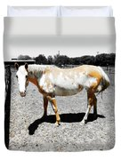 Painted Horse II Duvet Cover